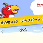 GVCは「ピッチングイン」プログラムで草の根スポーツをサポート!